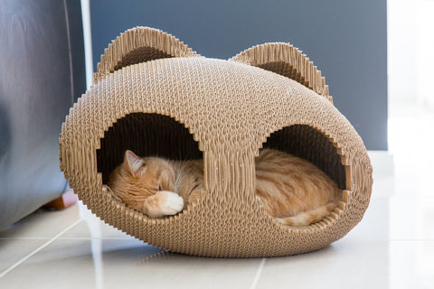 Cat boxes, pods and lounges / Modnpod