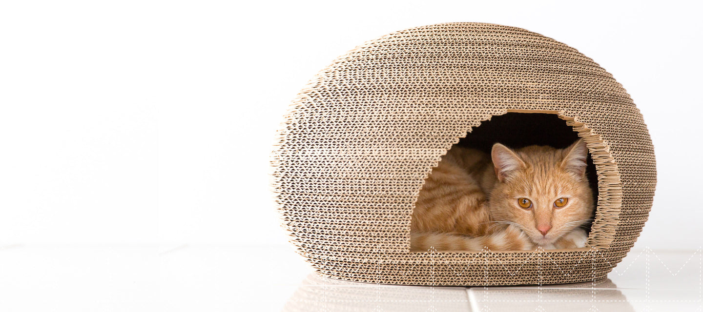 Modnpod Cardboard Cat Dome / Cat Boxes