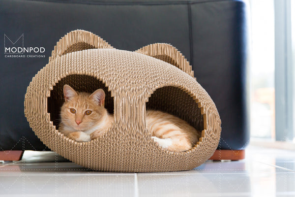Stylish Cat Pod / Modnpod Cardboard Cocoon / Cat Cubby House