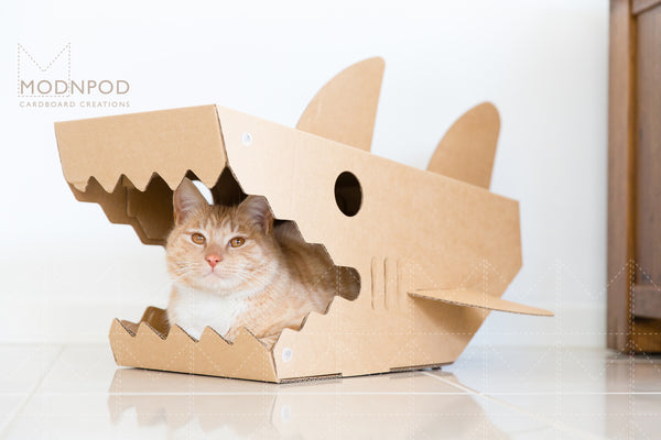 Shark Cat Pod / Cat Boxes & Beds / Modnpod Cardboard Creations