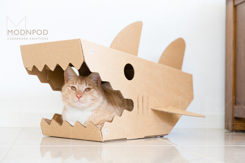 Modnpod Shark Cat Box