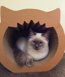 Yawning Cat Box / Modnpod Cardboard Creations