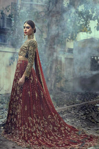 Red Blue Heavily Embellished Designer Handwork Bridal Wear with Train