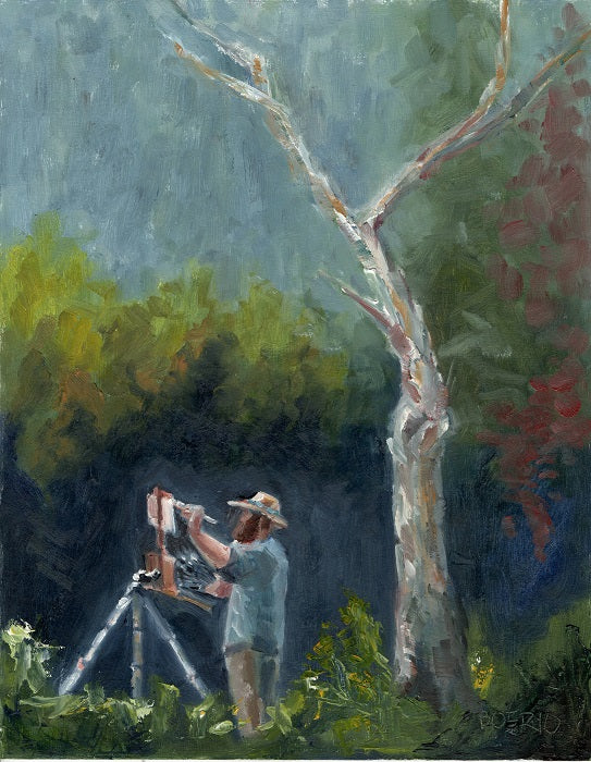 Painter and Sycamore (11 x 14