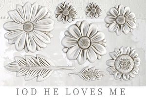 IOD Decor Mold He Loves Me