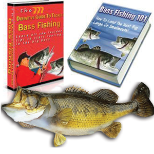 Ultimate Bass Catcher Secrets PLUS BONUS