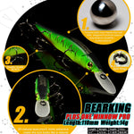 Bearking Plus One Minnow Pro
