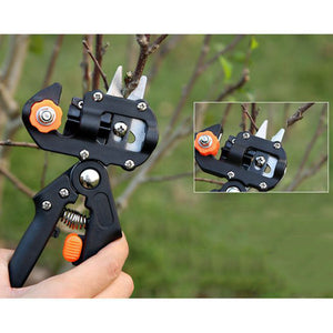 Tree Grafting Tool