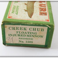 Creek Chub Redside Dace Injured Minnow In Correct Box 1505