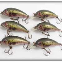 Cordell Natural Rainbow Trout Big O Lures In Dealer Box
