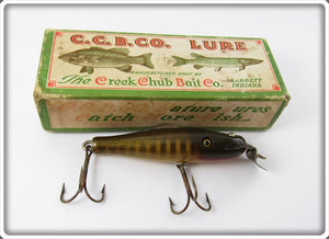 Creek Chub Pikie Scale Baby Pikie In Box