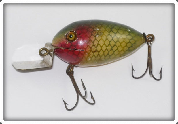 Alliance Ohio Perch Lure