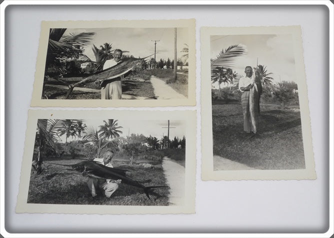 3 Early 1960's Original Photos Of A Man With A Marlin