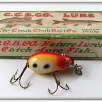 Vintage CCBC Creek Chub Spotted Tiny Tim Lure In Box 6427