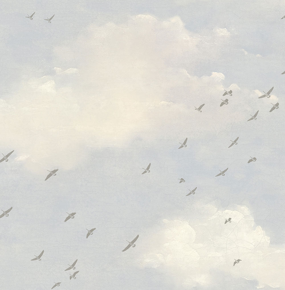 Cloud wallpaper with birds