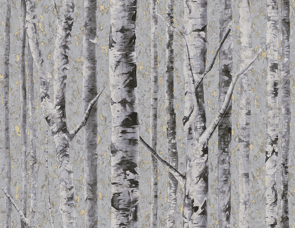 Birch Moonlight FJ41609