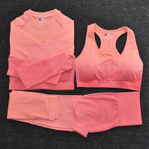 Ombre On-Trend Women's Yoga Set | High Waist Seamless Leggings | Long Sleeve Crop Top | Sports Bra | Running Pants