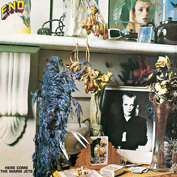 Brian Eno - Here Comes The Warm Jets - LP - rock