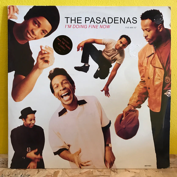 The Pasadenas - I'm Doing Fine Now - 12