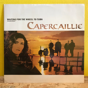"Capercaillie - Waiting for the Wheel to Turn - 12"" single - downtempo"
