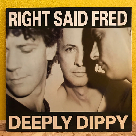 Right Said Fred - Deeply Dippy - House - 12