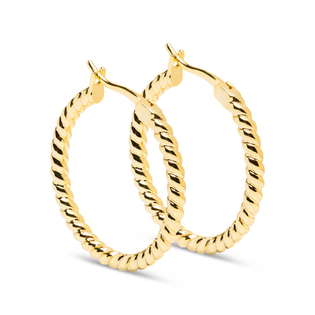 Twisted Earrings