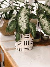 Mud Cloth Plant Basket 4,6 and 8 inch's