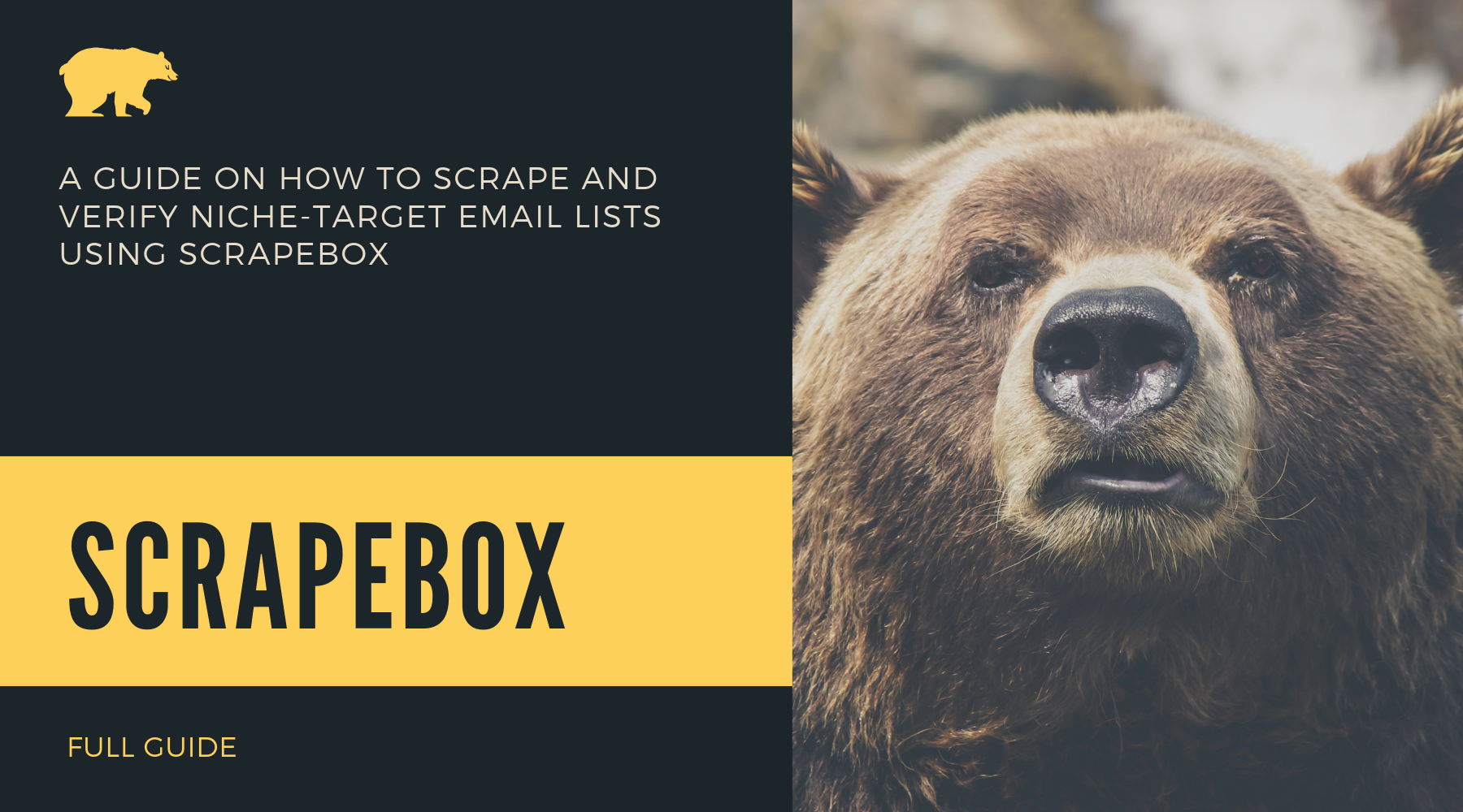 A GUIDE ON HOW TO SCRAPE AND VERIFY NICHE-TARGET EMAIL LISTS USING SCRAPEBOX