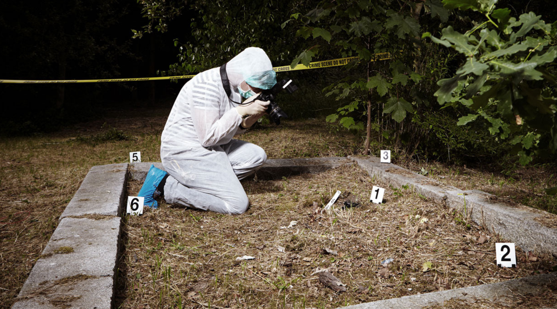 FRESH List of Forensic Psychology Blogs and Websites For Guest Blog Posts wallpaper