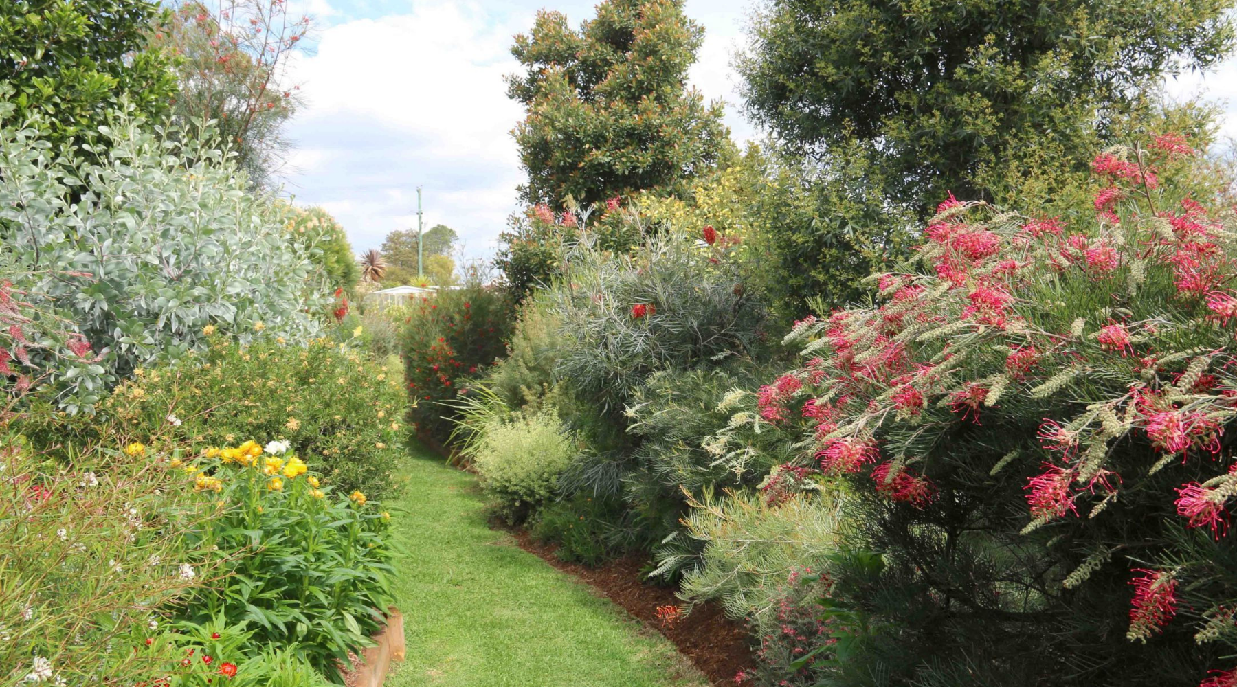 NEW List of Australian Gardening Blogs and Sites that Allow Guest Blogging wallpaper