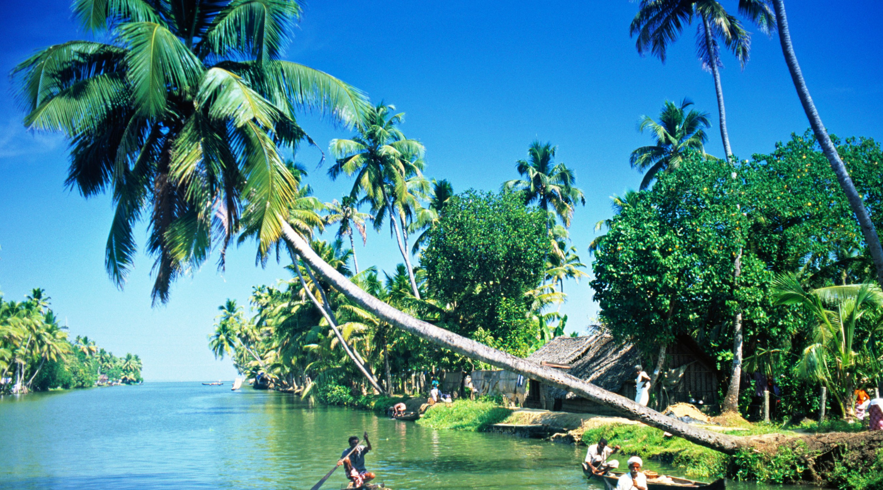UPDATED List of Kerala Travel Blogs and Websites For Guest Blog Posts wallpaper