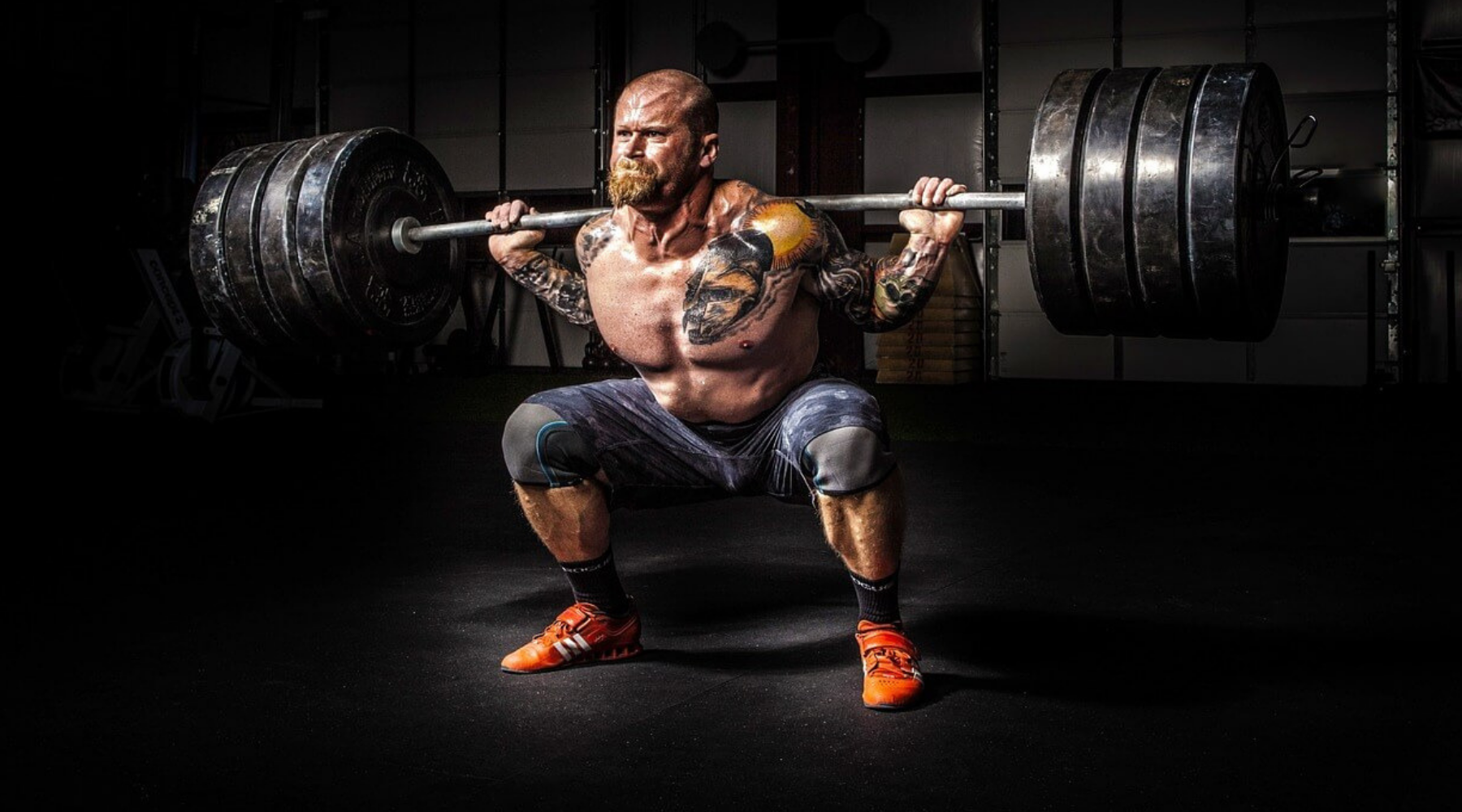 UPDATED List of Powerlifting Blogs and Websites For Guest Blog Posts wallpaper