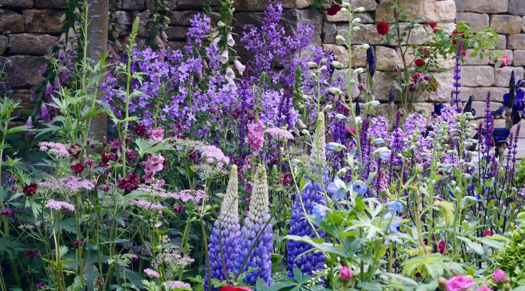 UPDATED List of UK Gardening Blogs and Sites that Accept Guest Posts wallpaper