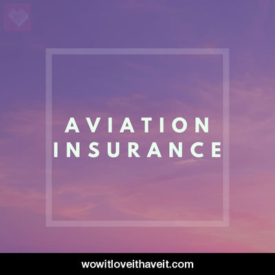 Aviation Insurance Businesses USA B2B Business Data - WowitLoveitHaveit