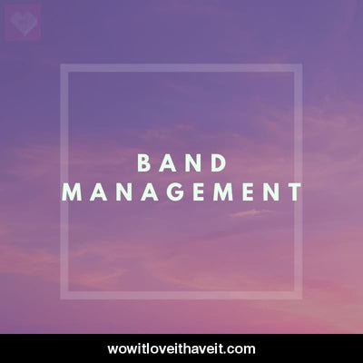 Band Management Businesses USA B2B Sales Leads - WowitLoveitHaveit