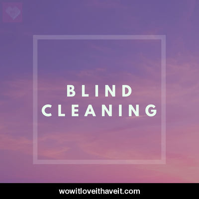 Blind Cleaning Businesses USA B2B Data List - WowitLoveitHaveit