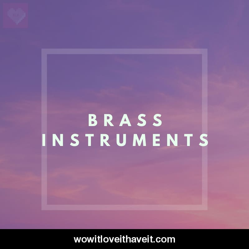 Brass Instruments Businesses USA B2B Data List - WowitLoveitHaveit
