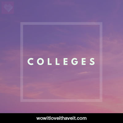 Colleges Businesses USA B2B Data List - WowitLoveitHaveit