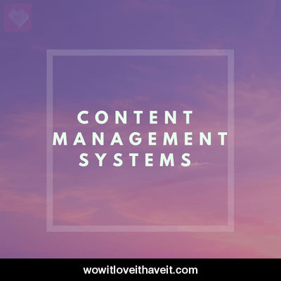 Content Management Systems Businesses USA B2B Marketing Lead List - WowitLoveitHaveit