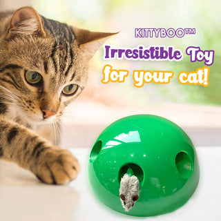 KITTYBOO™ : Peek-A-Boo Cat Toy