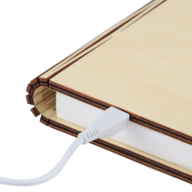 LAMBOOK™ : Booklovers Book Lamp
