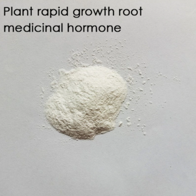 ROOTYN™ : Rapid Rooting Powder