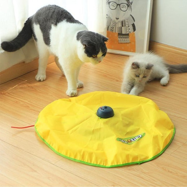 CATCHIT™ : Interactive Cat & Kitten Toy