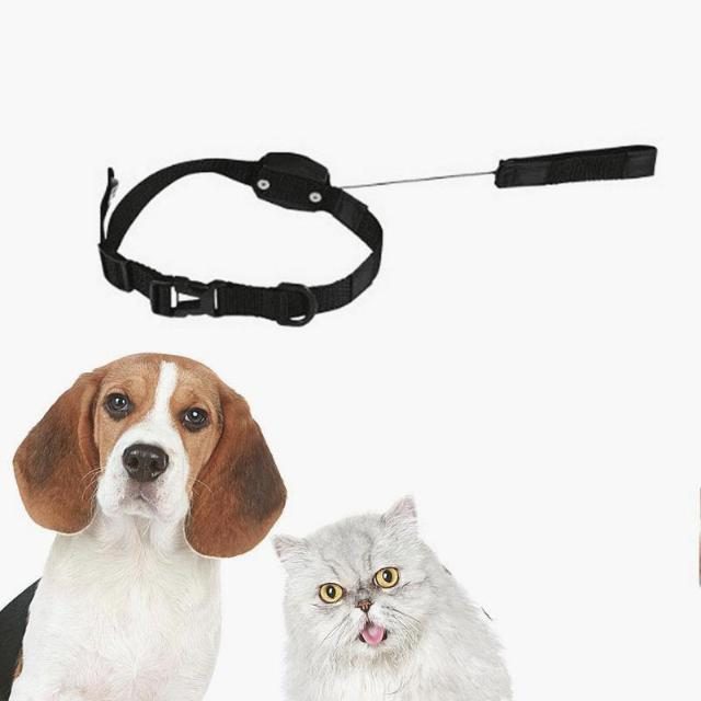 LuckyLeash™ : 2-in-1 Magnetic Retractable Pet Leash & Collar