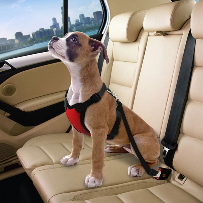 PETSAF™: Dog's Car Seat Belt