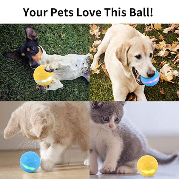 PETOMY™: Smart Pet Ball