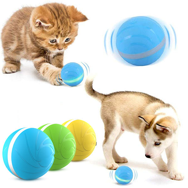 PETOMY™: Anti-Boredom Smart Pet Ball