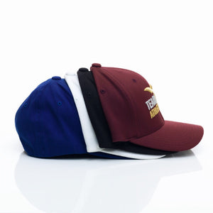 Tearadactyl Athletic® Flex-fit Hat (Unisex)
