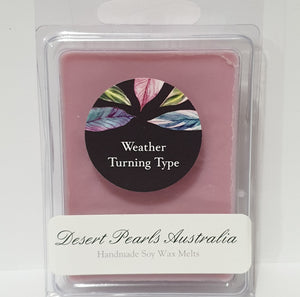 Weather Turning Type 6 pack handmade Soy Wax Melts