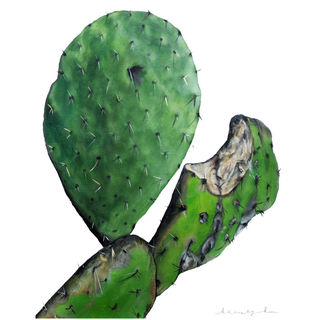 Monty the Paddle Cactus on Canvas Posters